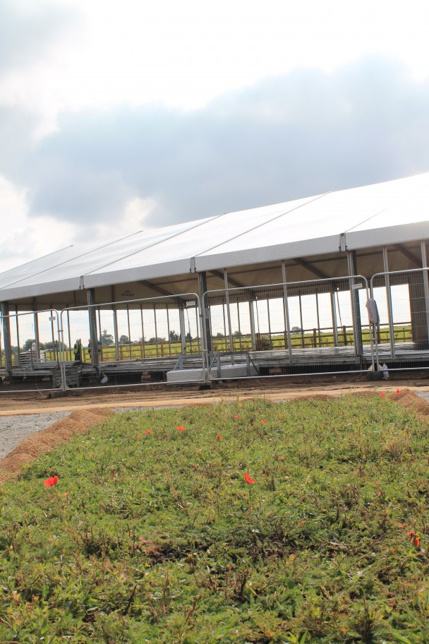 The inauguration event- marquee preparations underway